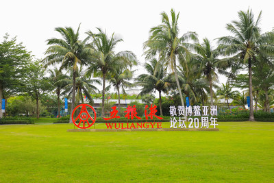 Photo shows the logo of China's leading liquor maker Wuliangye on a grassland of Boao Forum for Asia (BFA) Annual Conference 2021 held in south China's Hainan.